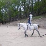 Ecole equitation cevennes lozère