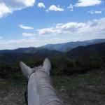 Une ballade à cheval dans les cévennes en lozère
