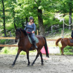 cours d' équitation adulte
